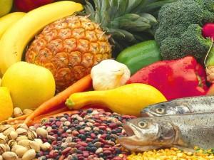 L'importanza dell'alimentazione